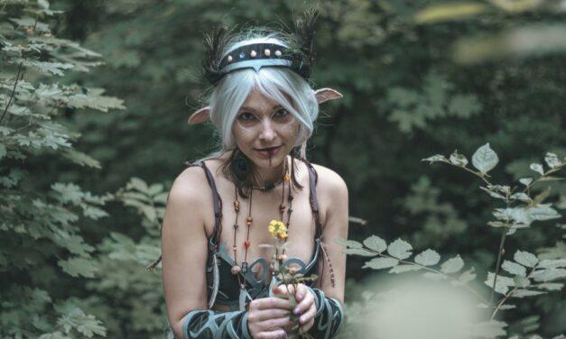 Photoshoot: Elf Druid (Original – Purplepastelchalk)